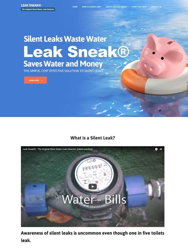 leaksneak
