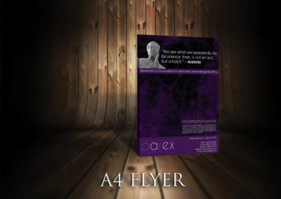 Parex Flyer